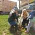 przedszkole-opoczno-konskie-akademia-przedszkolaka248