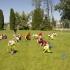 304przedszkole-niepubliczne-akademia-przedszkolaka-opoczno-konskie