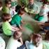 przedszkole-opoczno-konskie-akademia-przedszkolaka113