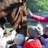 przedszkole-opoczno-konskie-akademia-przedszkolaka240