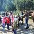 przedszkole-opoczno-konskie-akademia-przedszkolaka245